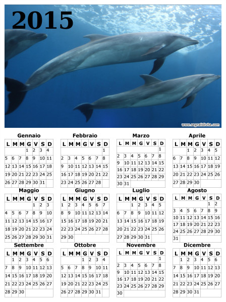 Calendario delfini del 2015
