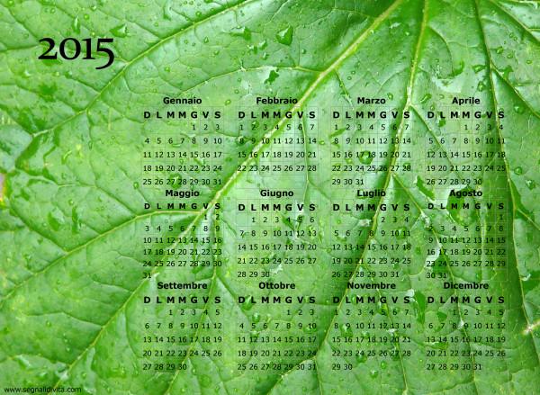 Calendario foglia del 2015