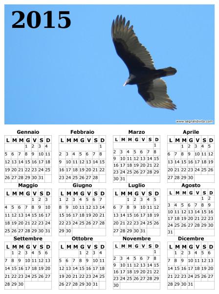 Calendario il volo del 2015