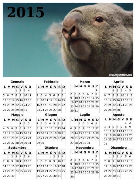 Calendario con Koala del 2015