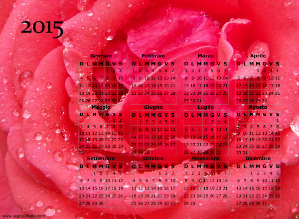 Calendario della rosa del 2015