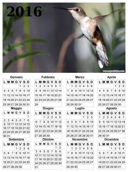 Calendario con colibri del 2016