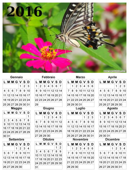 Calendario con farfalla del 2016