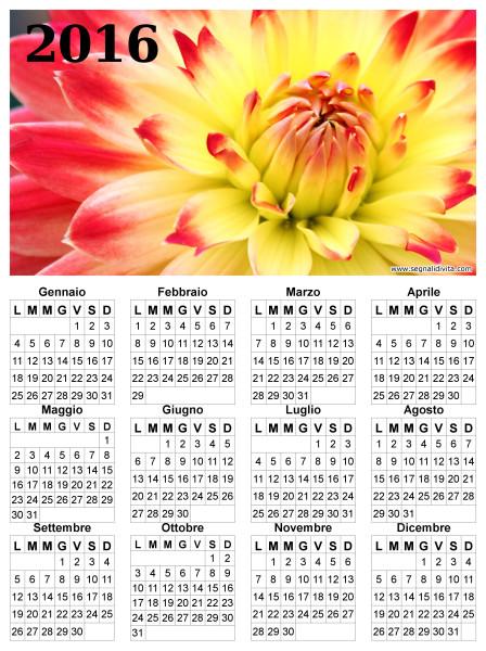Calendario con fiore del 2016