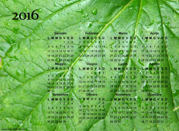 Calendario foglia del 2016