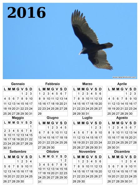 Calendario il volo del 2016