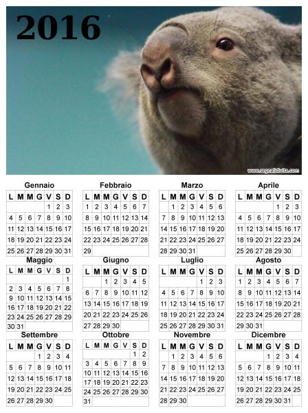Calendario con Koala del 2016