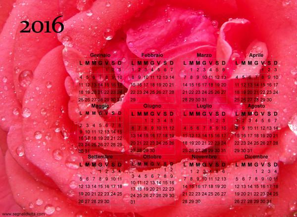 Calendario della rosa del 2016