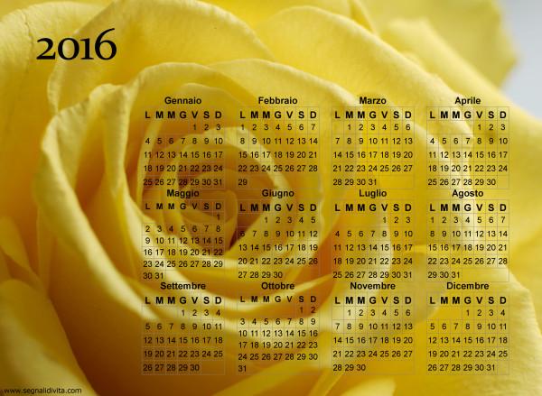 Calendario rosa gialla del 2016