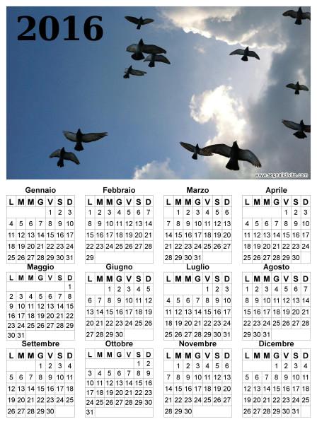 Calendario uccelli in volo del 2016
