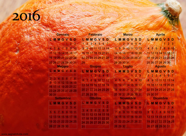 Calendario zucca del 2016