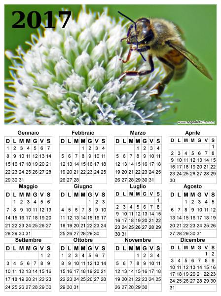 Calendario ape su fiore del 2017