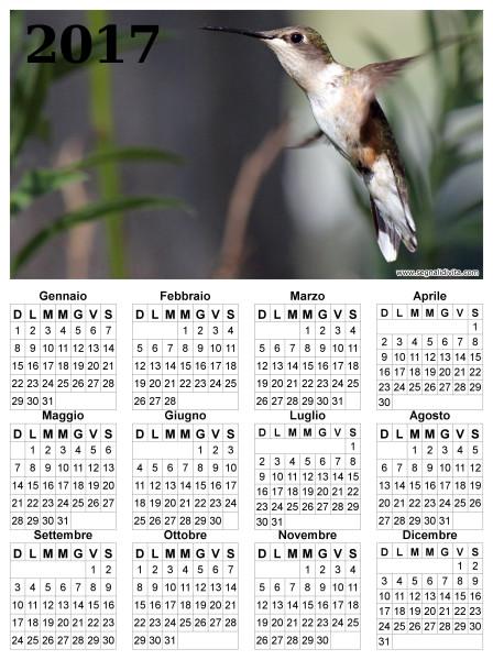 Calendario con colibri del 2017