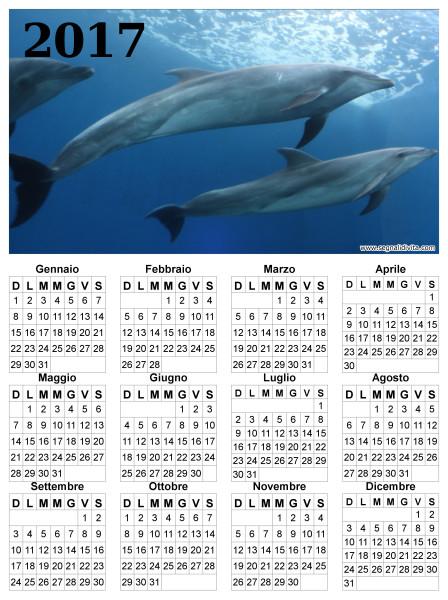 Calendario delfini del 2017