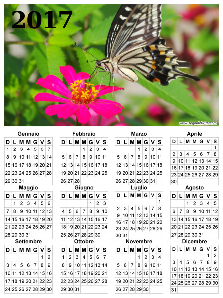 Calendario con farfalla del 2017