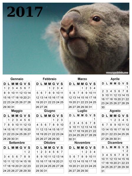Calendario con Koala del 2017