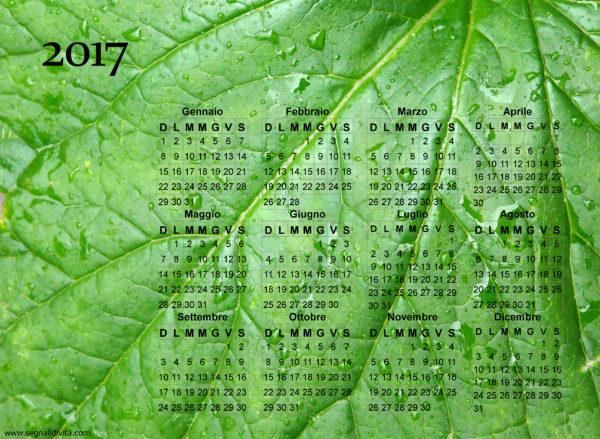 Calendario foglia del 2017