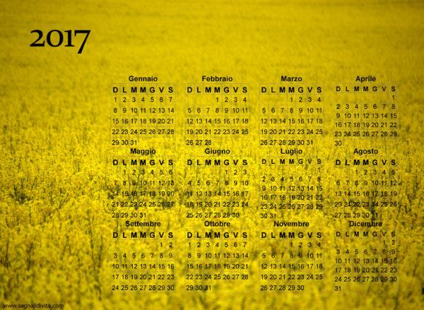 Calendario giallo fiorito del 2017