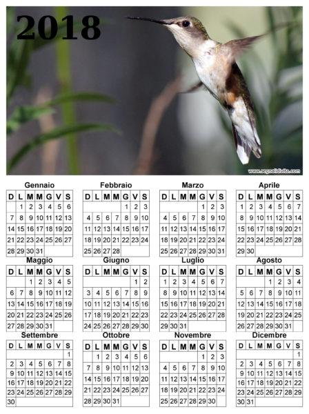 Calendario con colibri del 2018