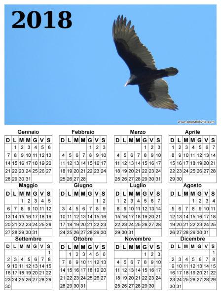 Calendario il volo del 2018