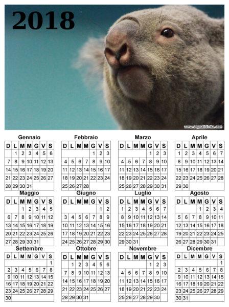 Calendario con Koala del 2018