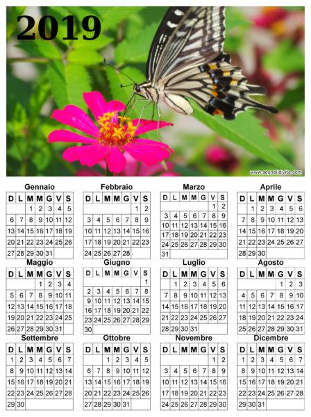 Calendario con farfalla del 2019