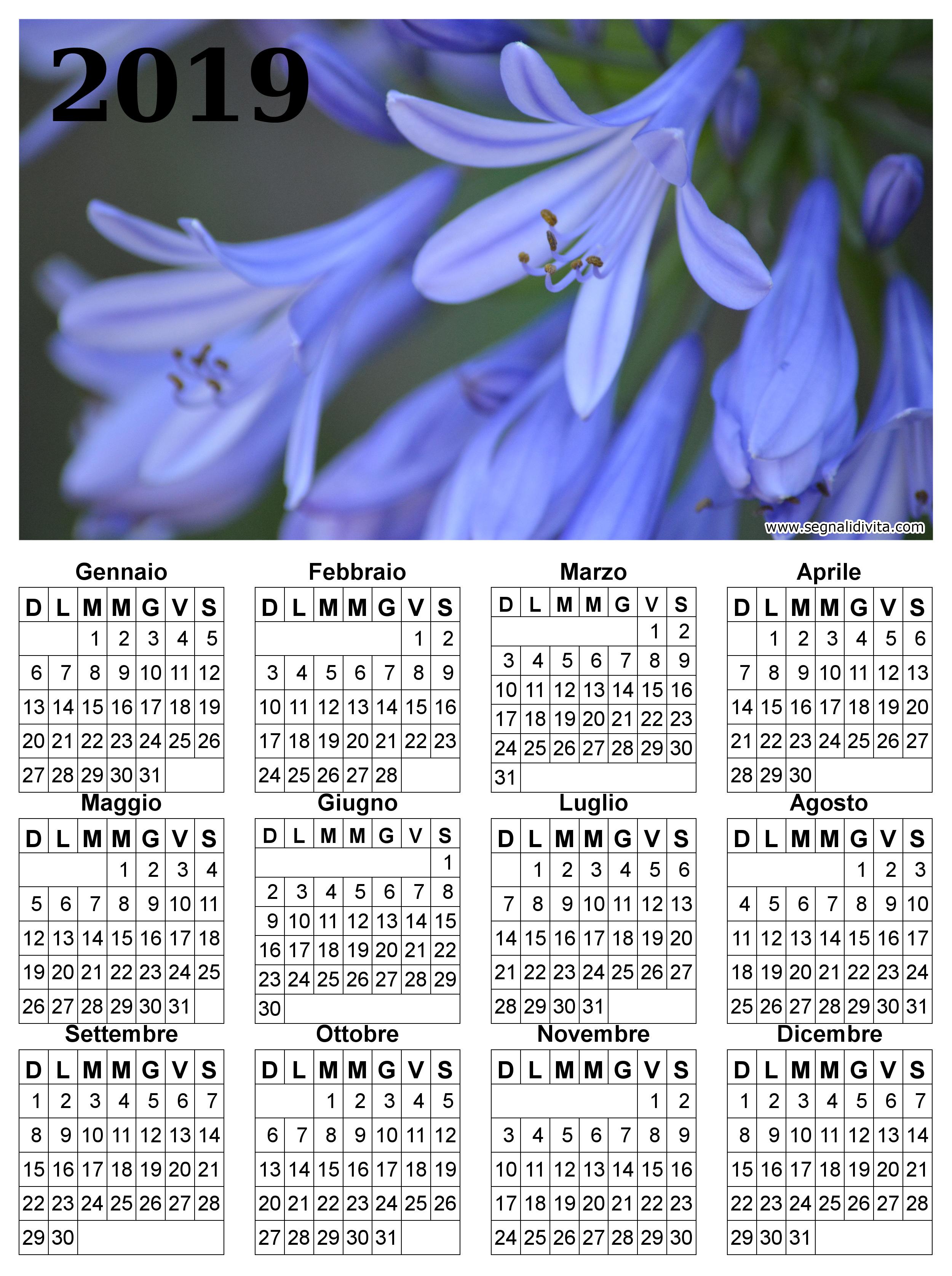 Calendario fiori del 2019