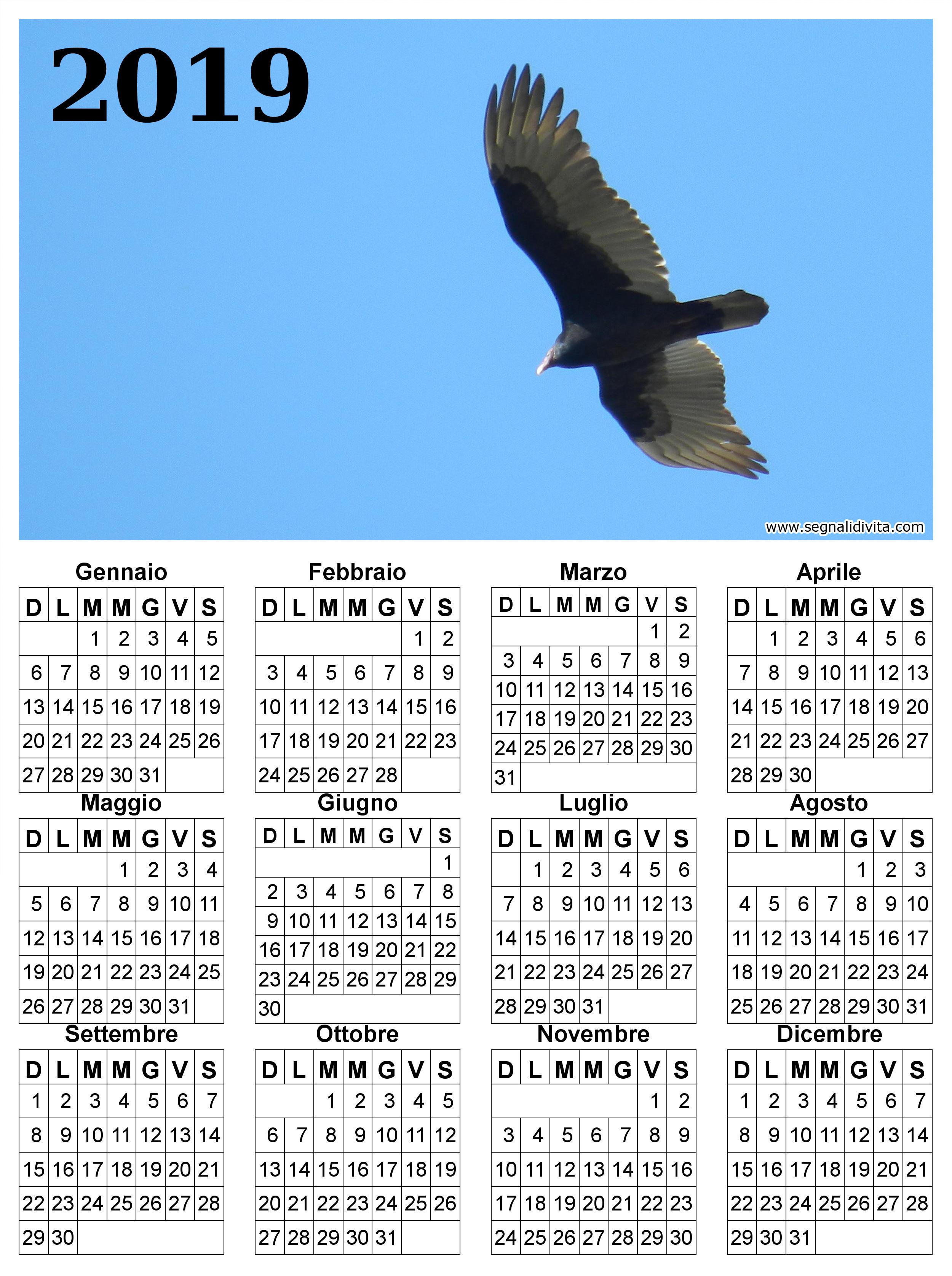 Calendario il volo del 2019