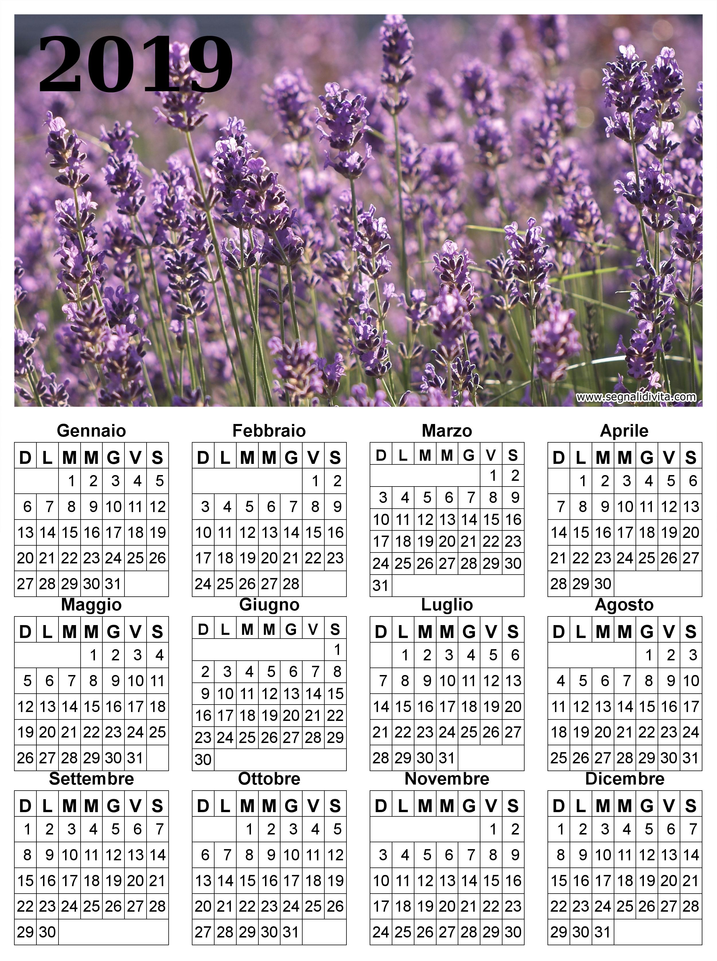 Calendario lavanda del 2019