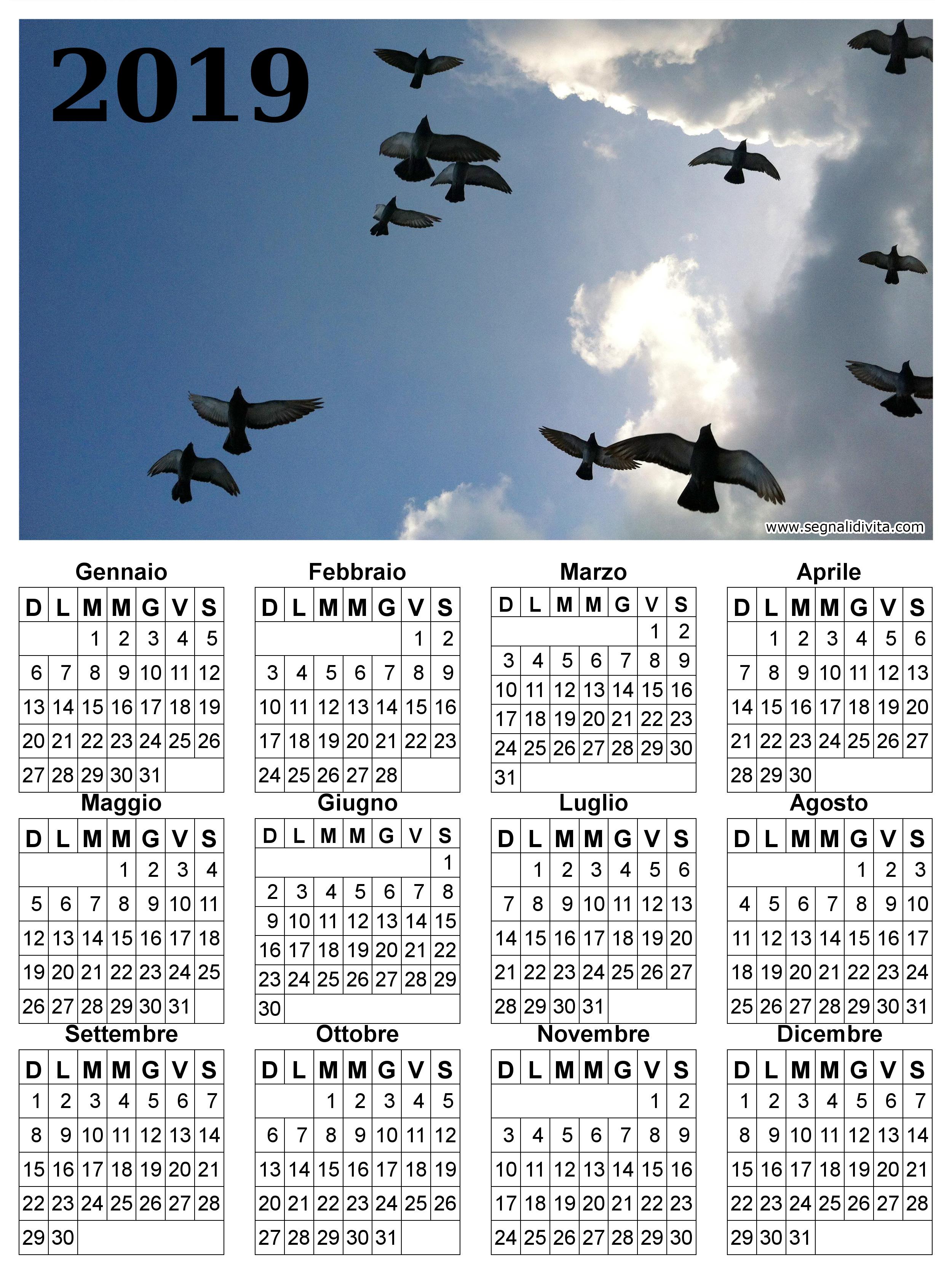 Calendario uccelli in volo del 2019