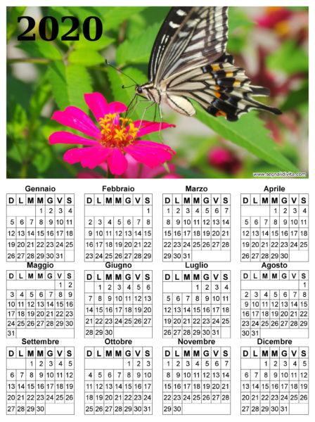 Calendario con farfalla del 2020