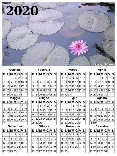 Calendario fior di loto del 2020
