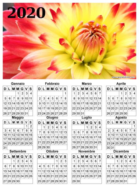 Calendario con fiore del 2020