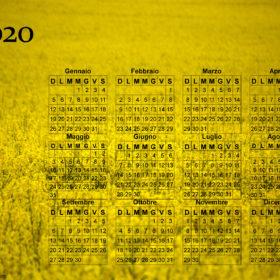 Calendario giallo fiorito del 2020