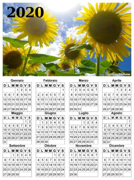 Calendario dei girasoli del 2020