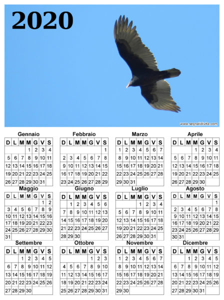 Calendario il volo del 2020