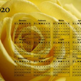 Calendario rosa gialla del 2020