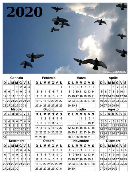 Calendario uccelli in volo del 2020